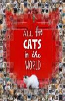All the Cats in the World