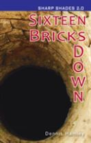 Sixteen Bricks Doiwn