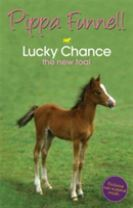Tilly's Pony Tails: Lucky Chance the New Foal