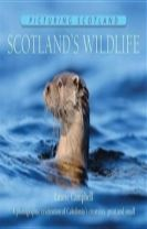 Scotland's Wildlife: Picturing Scotland