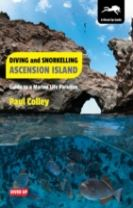 Diving and Snorkelling Ascension Island