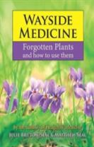Wayside Medicine: Forgotten Plants to Make Your Own Herbal Remedies