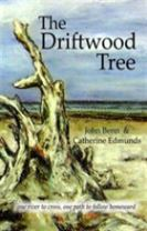The Driftwood Tree