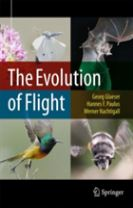 The Evolution of Flight