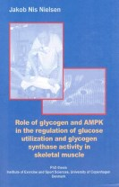 Role of glycogen and AMPK in the regulation of glucose utilization and glycogen synthase activity in skeletal muscle