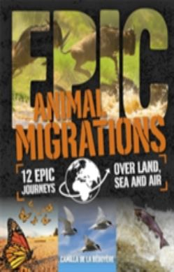 Animal Migrations forside