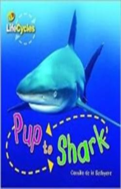Pup to Shark forside