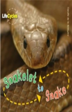 Life Cycles: Snakelet to Snake forside