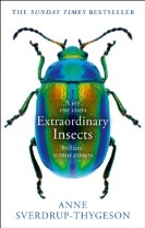 Extraordinary Insects : Weird. Wonderful. Indispensable. the Ones Who Run o