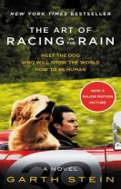 The Art of Racing in the Rain MTI