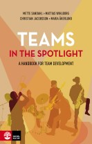 Teams in the spotlight : A handbook for team development