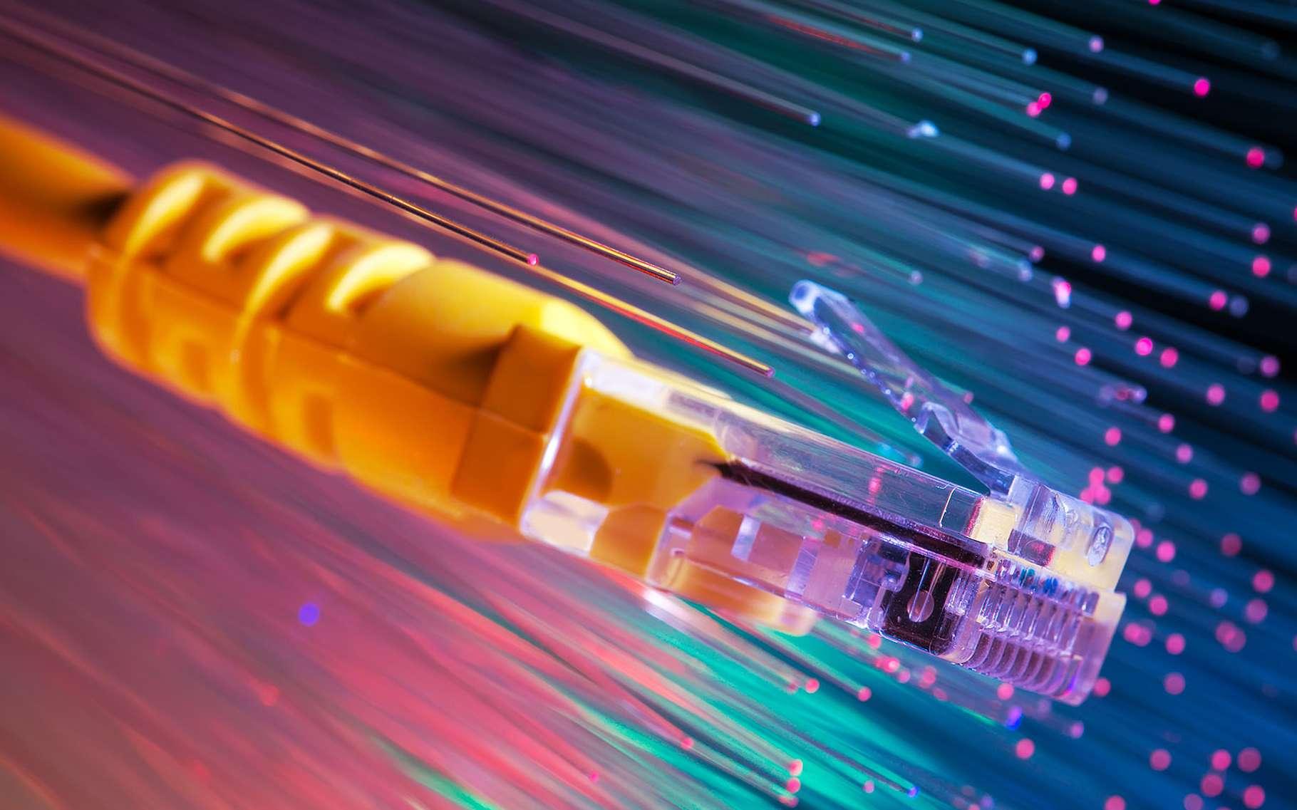 cavo rete e luci. Indicano la fibra ottica