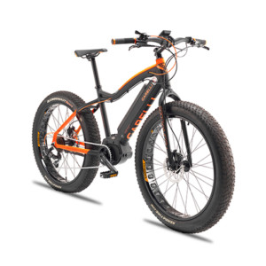 e-bike iren garelli bici pedalata assistita