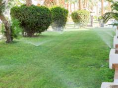 Sistema di irrigazione intelligente: 5 cose da sapere prima di acquistarlo