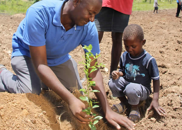 Timberland si unisce a Treedom per piantare 26.000 alberi in Ghana