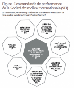 le role des institutions financieres de la rse
