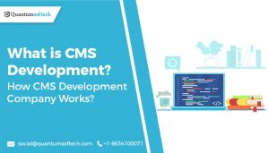 What is CMS Development? How CMS Development Company Works?