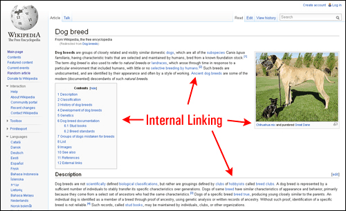 come aumentare le visite al sito usando i link interni