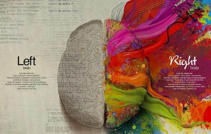 Neuromarketing applicato al web: emisfero-destro-sinistro