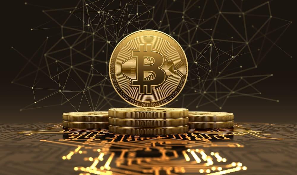 Bitcoin growth bot bitcointalk