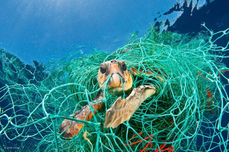 Fototentoonstelling: Planet or Plastic – Samenwerken aan een duurzame wereld