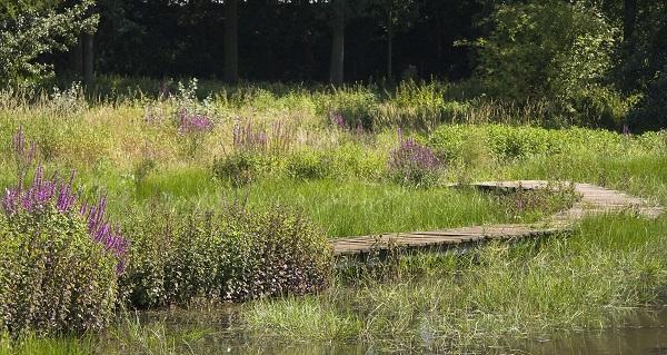 Lege wandelpaden vind je overal in Nederland, alleen niet op een zonnige zondagmiddag.