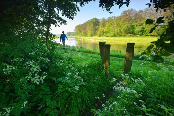 Nieuwe route: wandelen rond het Overijsselse landgoed Eerde
