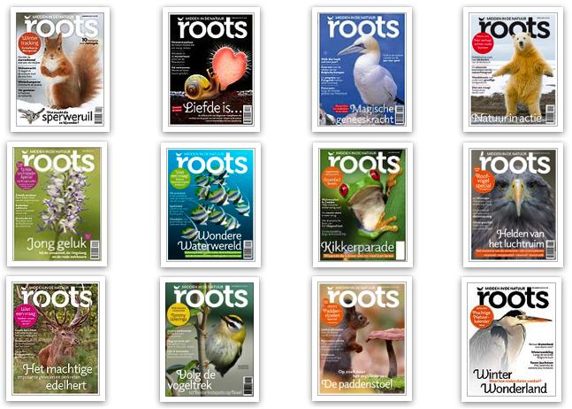 De mooiste Rootscover van 2014