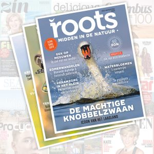 Roots Zomercampagne 2021