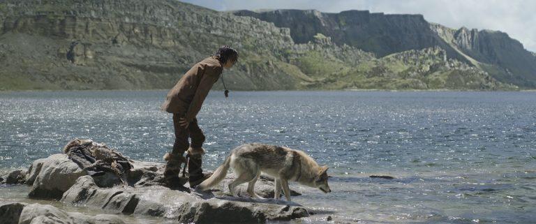 Roots-aanbieding: filmweekend Vlieland vol wildernis