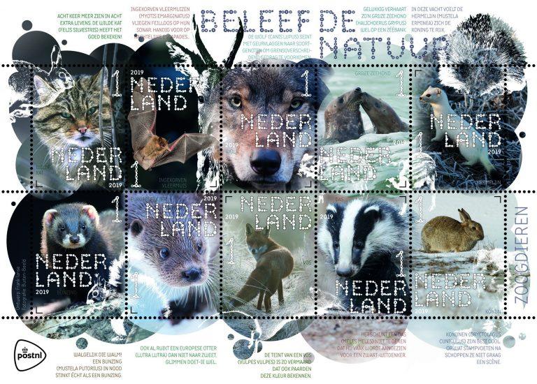 Wolven in Nederland, nu ook op de postzegels!