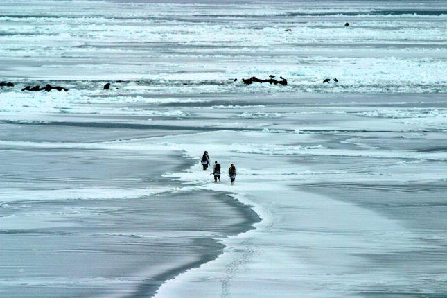 Beringzee