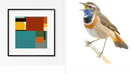 Blocbirds: vierkante vogels kijken