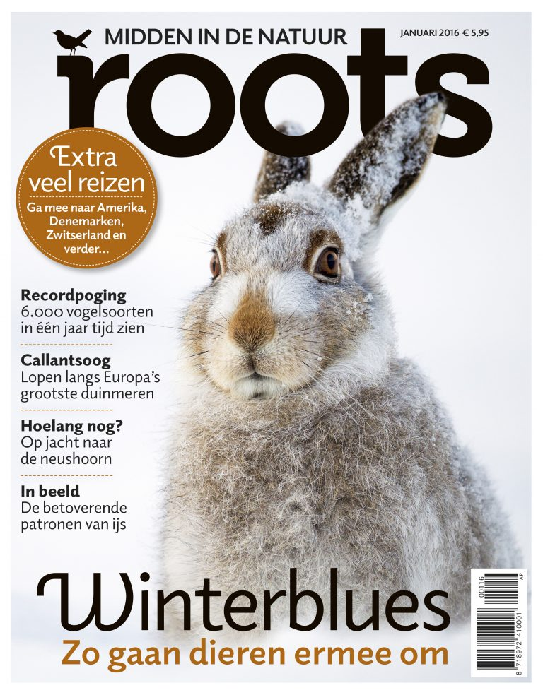 De Roots van januari is uit!