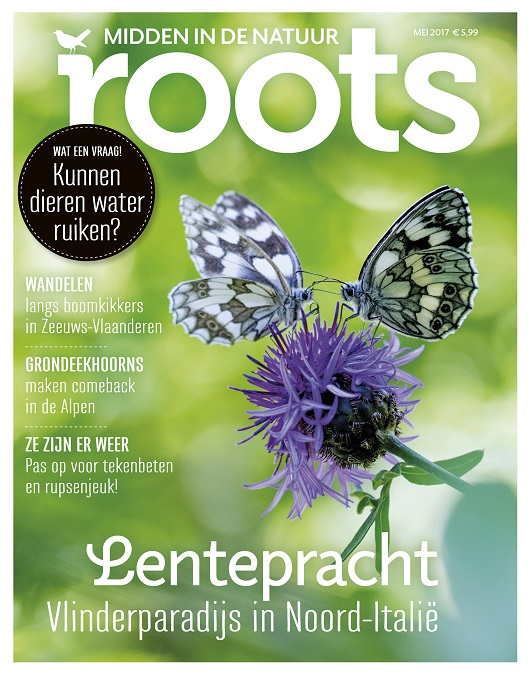 Roots 5 – April/mei 2017