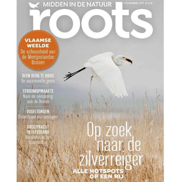 COVER-ROOTS-11-wp