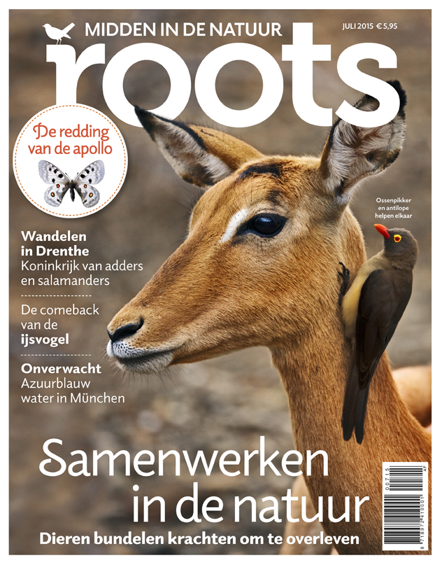 De Roots van juli is uit!