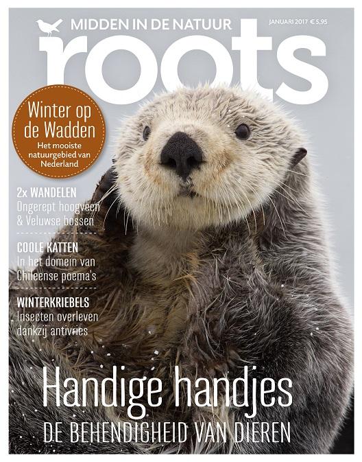 cover-roots-januari-2017