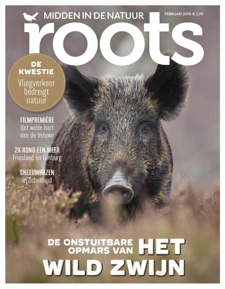 Roots editie 2-2018