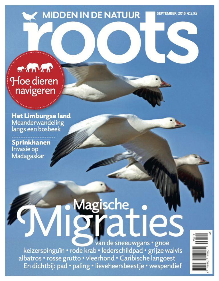 De september-Roots is uit!