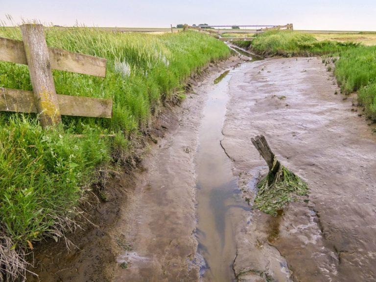 Noarderleech: wandelen over land tussen zee en dijk