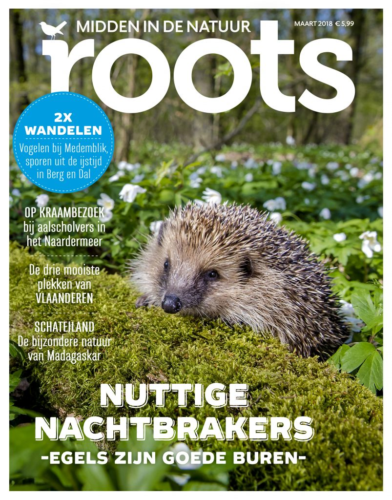 Cover-ROOTS-03-20183