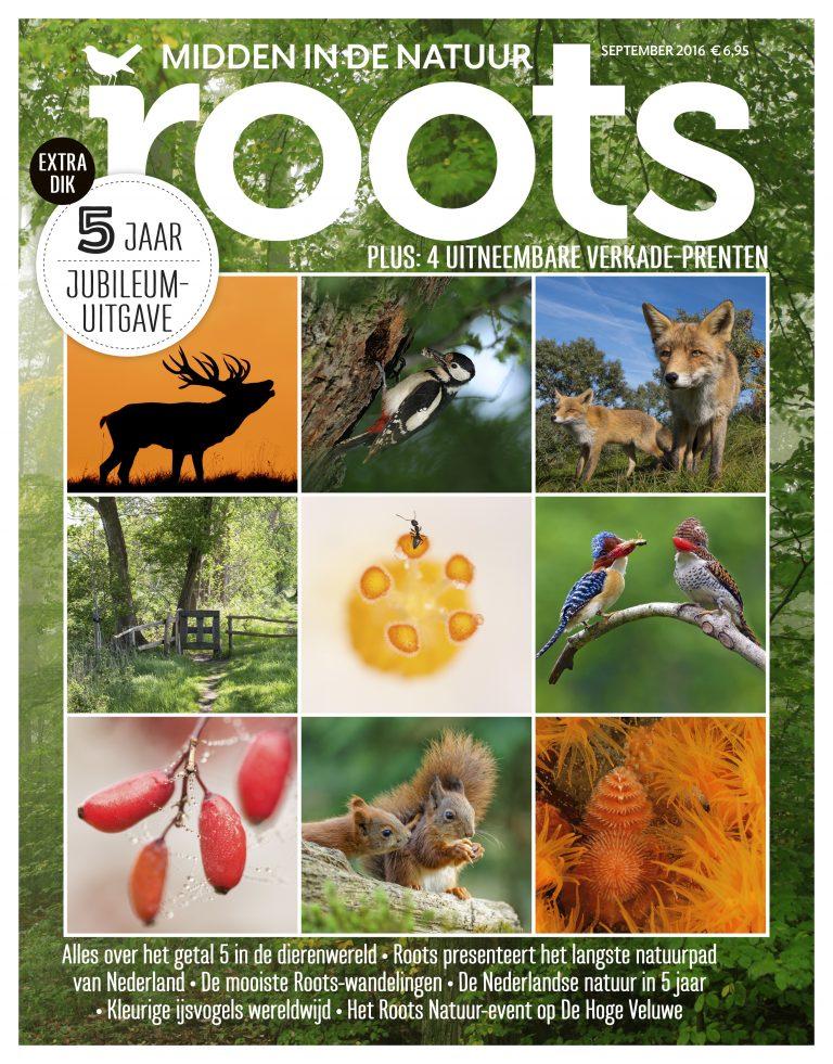 De Roots van september is uit!