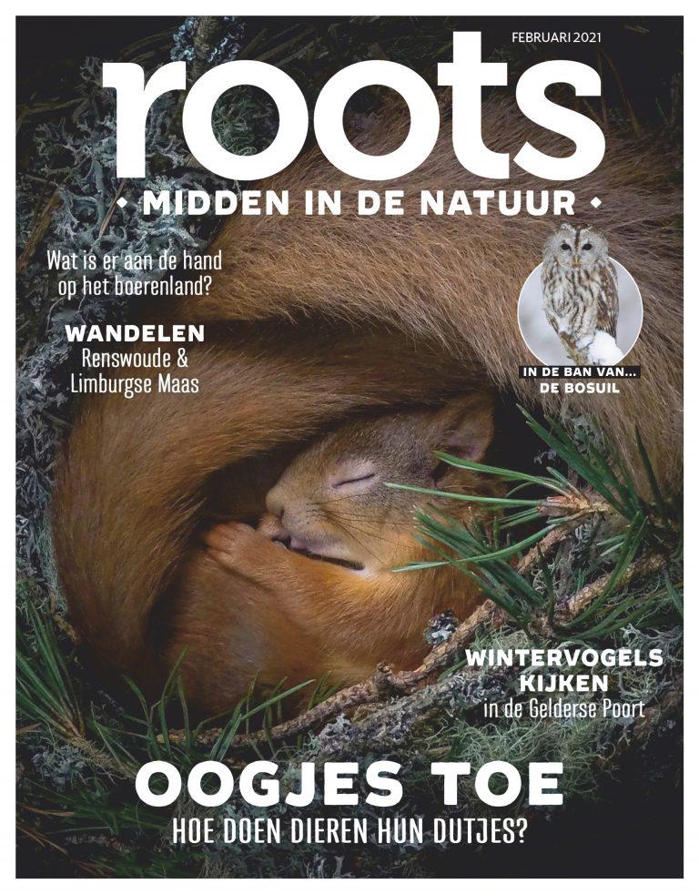 Roots editie 2 – 2021