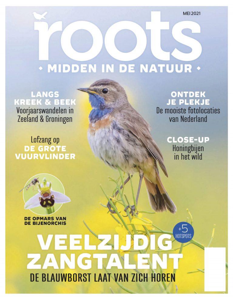 Roots editie 5 – 2021