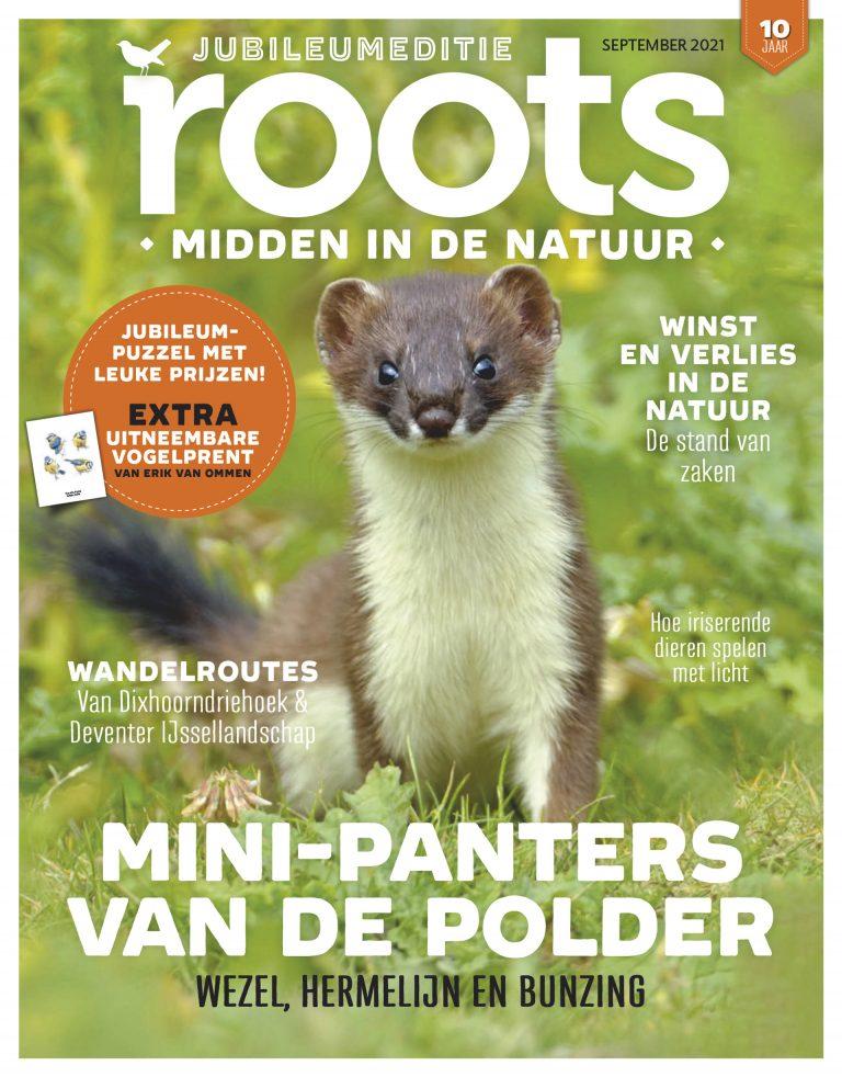 Roots editie 9 – 2021