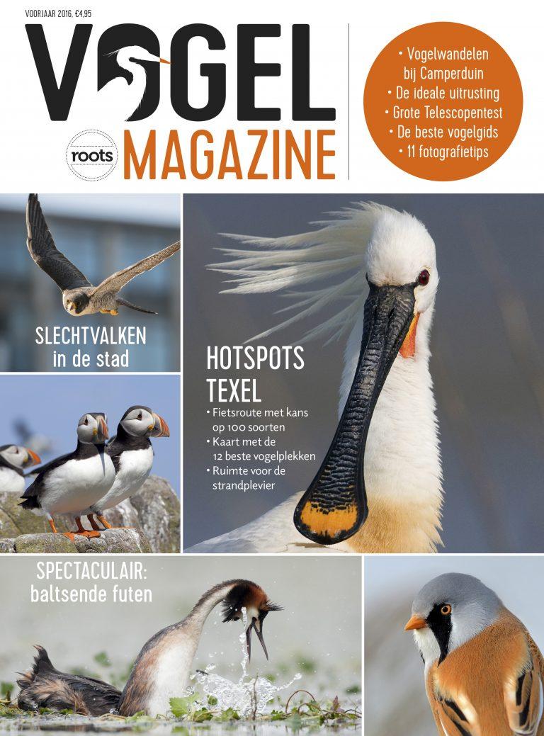 Vogelmagazine: nieuw tijdschrift voor beginnende vogelaars