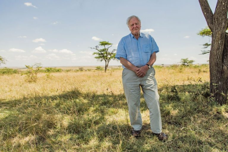A Life on Our Planet: de hoopvolle boodschap van David Attenborough
