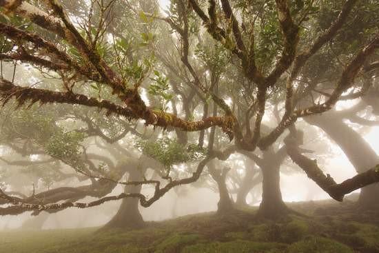 Roots-lezing op Fiets en Wandelbeurs