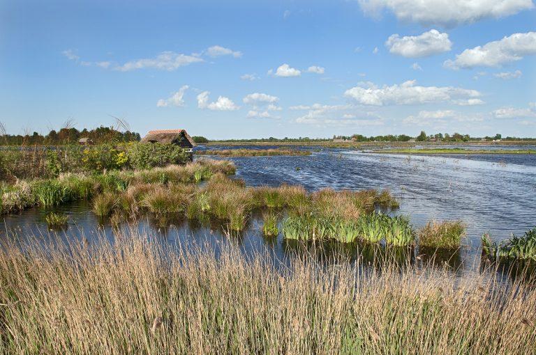De Alde Feanen is 'hoofdstad' van Fête de la Nature 2018